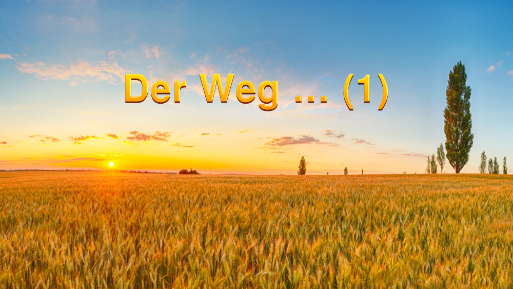 Der Weg … (1)
