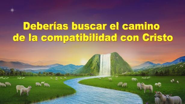 Deberías buscar el camino de la compatibilidad con Cristo