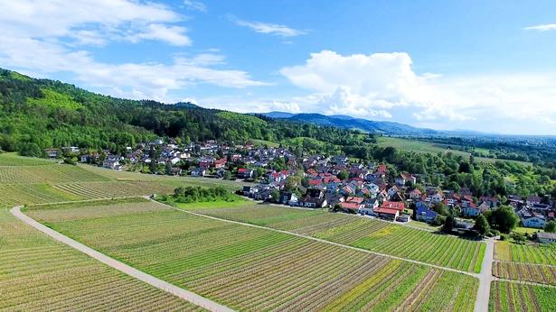 Campos de trigo y pueblos, grandes montañas en la distancia