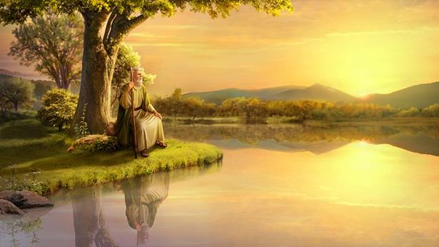 Job se sienta debajo del gran árbol junto al lago y mira la puesta de sol