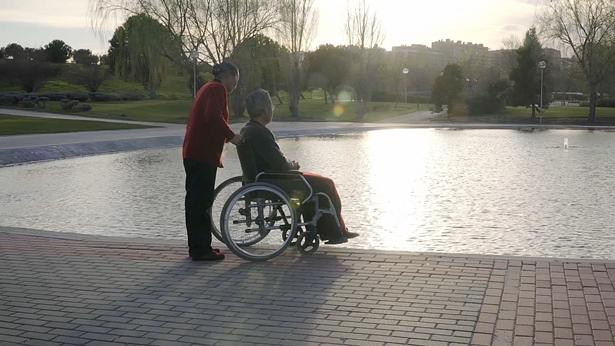 Una abuela junto al lago empujó al viejo abuelo en una silla de ruedas, y el abuelo miró el árbol opuesto.