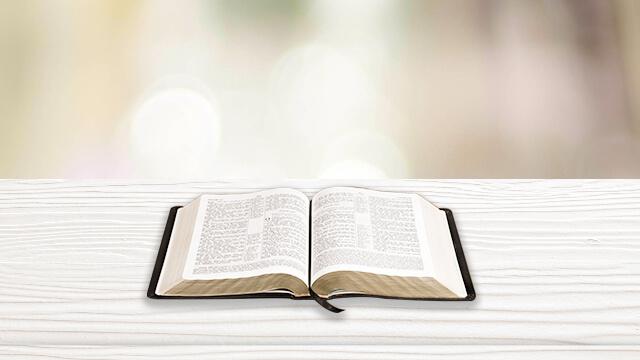 6. Come ci si dovrebbe trattare la Bibbia e usarla, in modo da essere conformi alla volontà di Dio? Qual è il valore originale della Bibbia?