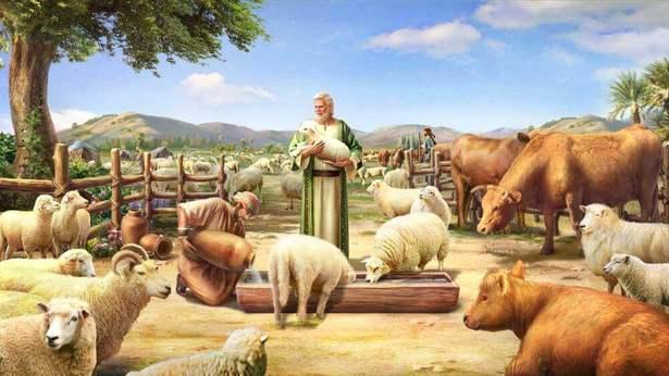 Ценность жизни Иова