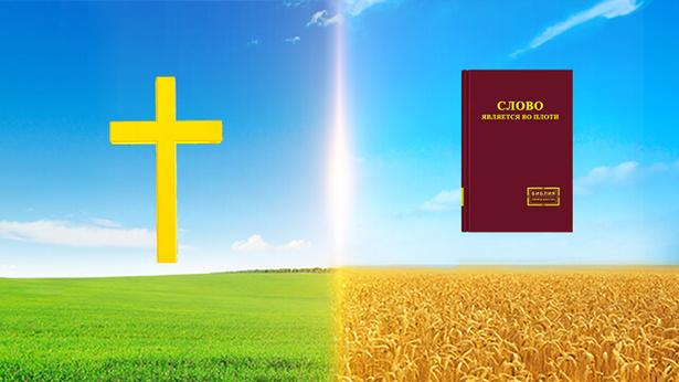 Следует распознавать различия между путем покаяния в Период Благодати и путем вечной жизни в последние дни