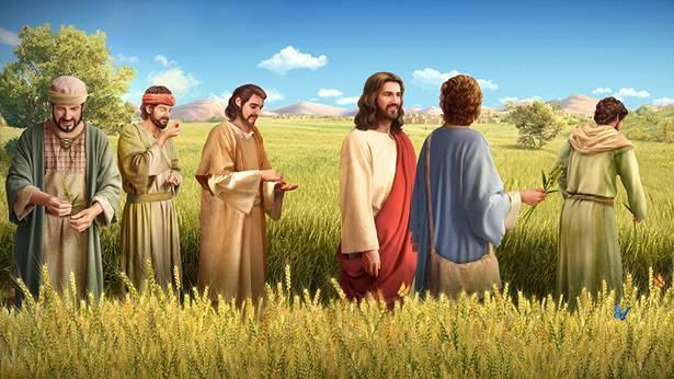 主耶稣在安息日作工