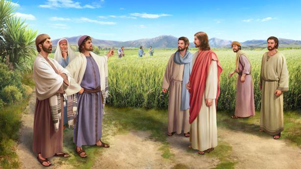 每日读经:主耶稣不守安息日要告诫我们什么呢