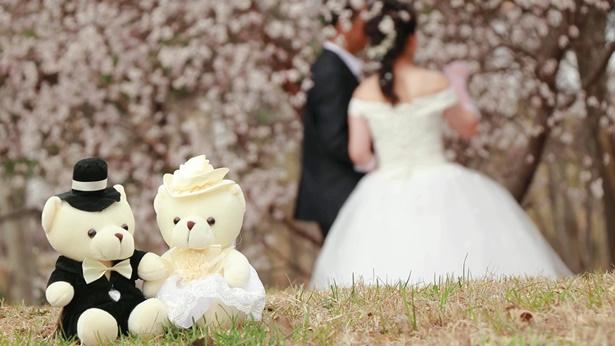 基督徒的婚姻